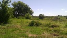 Ниже гребли с западной стороны пруда